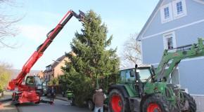 Aufstellen eines Weihnachtsbaumes