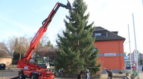 Aufstellen vom Weihnachtsbaum